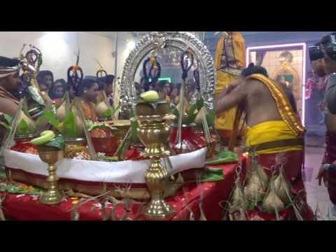 sivan kovil  kalasa pusaa new year01.01.2017 சிவன்கோவில் கலசபூஜை