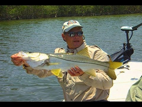 Banana River Fishing for Snook in the Cocoa Beach Canals