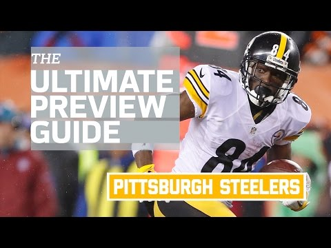 Pittsburgh Steelers 2016 Team Preview (Infographic) | NFL