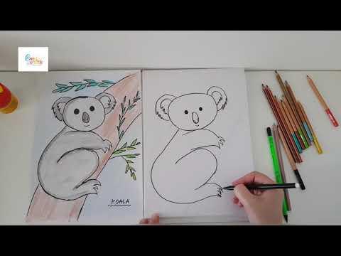 Desen - Ursuletul Koala