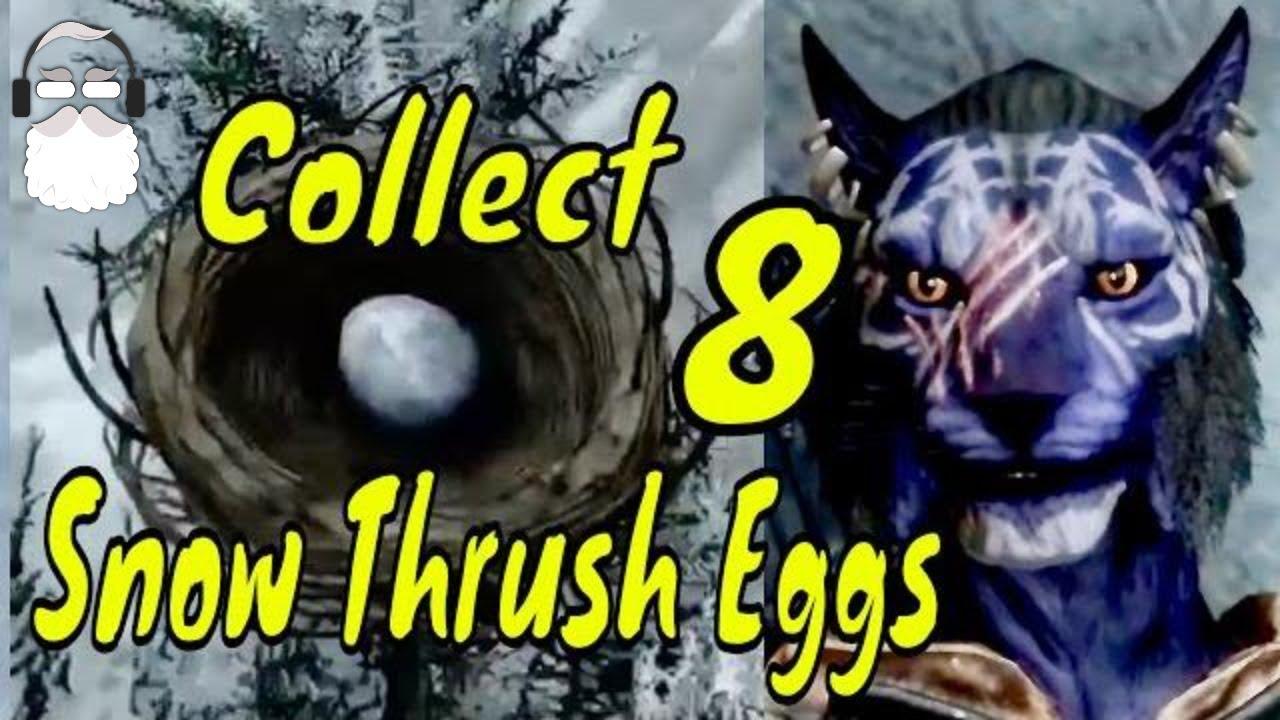 Inigo Collect 8 Snow Thrush Eggs For Langley Elder Scrolls V