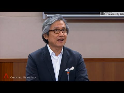 WP's Chen Show Mao suggests more CPF top-ups for informal caregivers - 12Apr2016