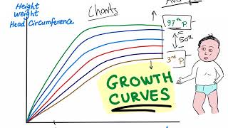 Growth Charts/ Percentile Curves; Are You Tall Or Short?