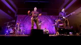 Steam Powered Giraffe - Honeybee (Live at the Walter Robotics Expo in San Diego)