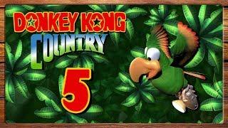 Let's Play Donkey Kong Country [German] #5 - Augenkrebs dank Squawks