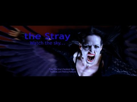 Trailer do filme The Stray