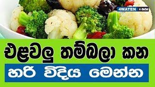 එළවලු තම්බලා කන හරි විදිය මෙන්න : How to cook vegetables with preserving nutrients? (2018)
