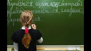 Учителю русского языка