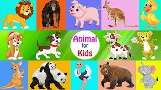 Best Bildungs-video für Kinder - Lernen, Tiere, cartoon-und real-für Kinder - Lustige Tiere 2017