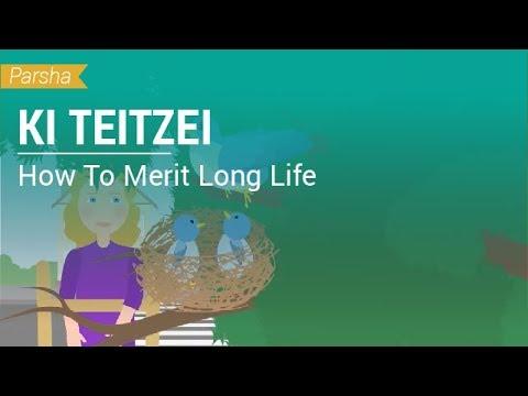Parshat Ki Teitzei: How To Merit Long Life?