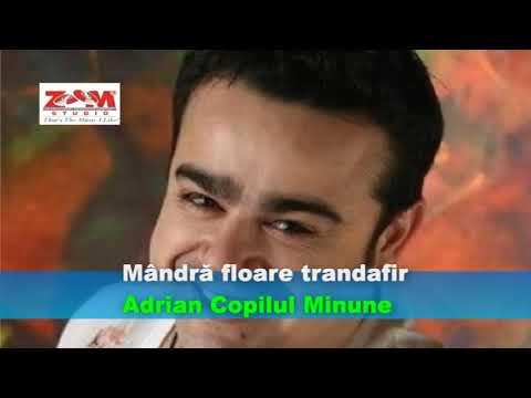 Adrian Minune - Mandra Floare Trandafir
