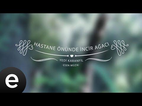 Hastane Önünde İncir Ağacı - Yedi Karanfil (Seven Cloves) - Official Audio - Esen Müzik #esenmüzik