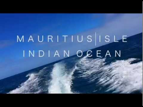 SWIMMING WITH DOLPHINS - Mauritius - Travel video 01