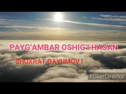 PAYG'AMBAR OSHIG'I HASAN / YEG'LAMASDAN ILOJI YO'Q!