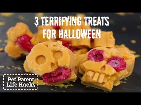 DIY SCARY Halloween Dog Treats | The Dodo Pet Parent Hacks