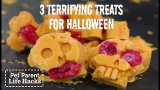 DIY SCARY Halloween Dog Treats Pet Parent Hacks