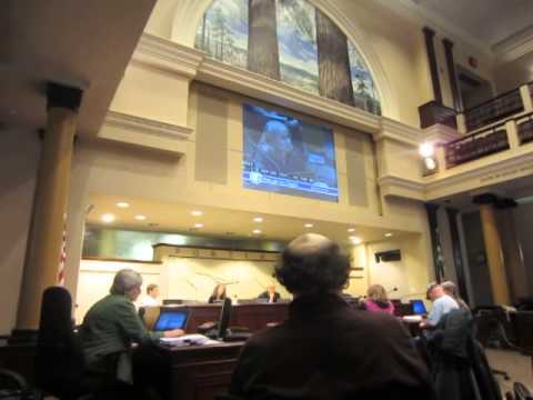 Portland City Council Last Minute appeal of DOJ settlement agreement on Police Brutality 7