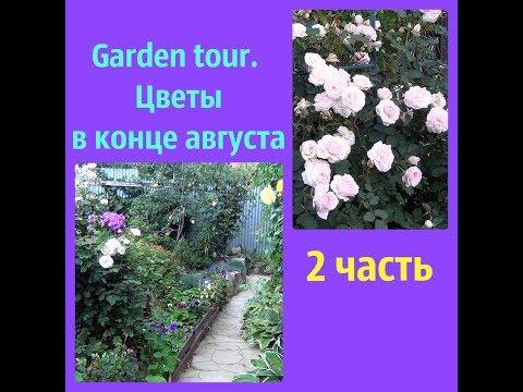 Garden tour.Розы и другие цветы в конце августа.2 часть.