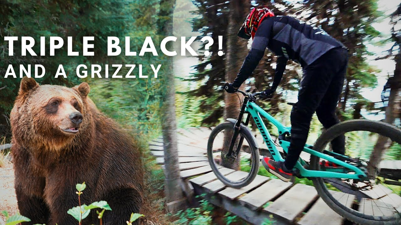 We saw a Grizzly Bear and rode a Triple Black Diamond Trail!