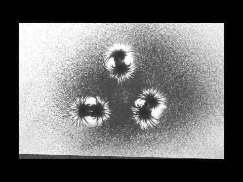 Magnetic Fields - Study Model