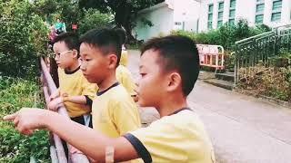 Publication Date: 2017-11-15   Video Title: 2017 11 15 陳國威小學旅行 (1A舊同學再聚篇)
