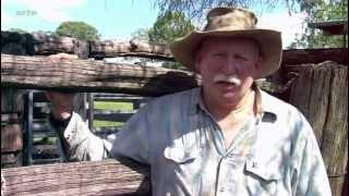 360° GEO Australie, les cowgirls tiennent les rênes