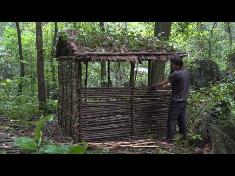 Complete the most Beautiful Hut and Traps, Survival in the Tropical Rainforest, Ep 100