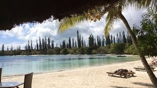 One day in the life of Impi - ILE DES PINS - NEW CALEDONIA