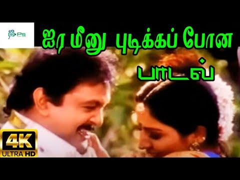 Ayira Meenu Pidikka || அயிர மீனு பிடிக்க போன || Mano, Swarnalatha Love Duet H D Song