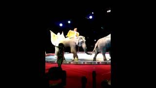 Shrine circus mn 2014