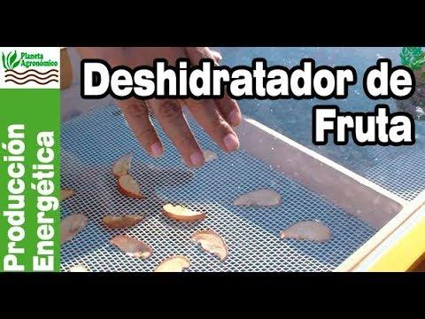 Tecnología solar – 4 - Deshidratador solar de fruta