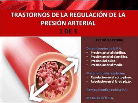 Fisiopatología de la presión arterial 1 de 3 - YouTube