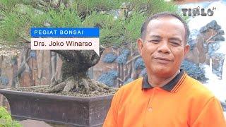 Gambar cover Bonsai, Dari Hobi Menjadi Industri