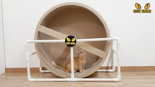 DIY 박스 캣휠 (DIY Cat wheel) | Ho…