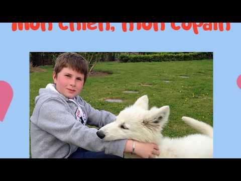 Mon chien, mon copain #chansonpourenfants #chien