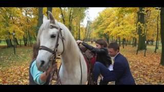 предложение руки и сердца на белом коне darikrasivo by