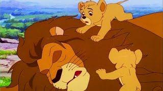 EIN NEUES ZUHAUSE - Simba der Löwenkönig | Folge 1 | Deutsch | Simba The Lion King