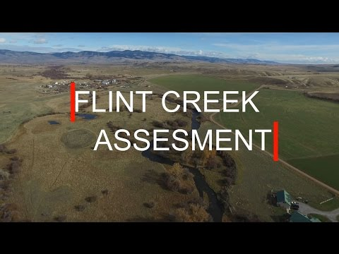 Flint Creek Assessment