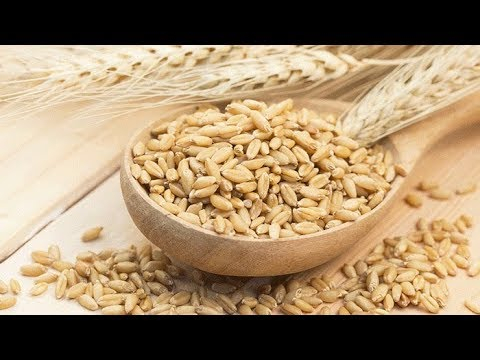 5-incredible-health-benefits-of-barley