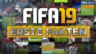 FIFA 19 ● ERSTE FAKTEN