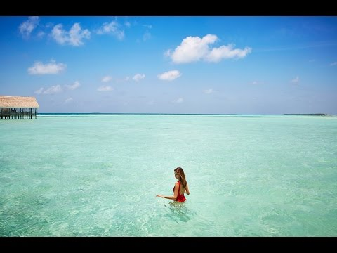 Make your Maldives dream vacation come true at LUX* South Ari Atoll