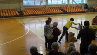 Награждение тех, кто ближе всех к 100-летию, бассейн, Великий Новгород