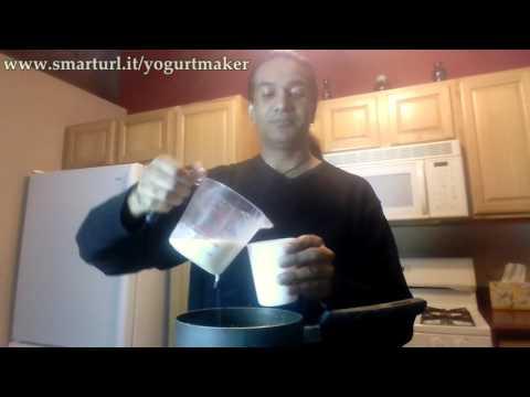DIY Homemade Yogurt - How To Use Salton Yogurt Maker