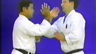 Goju-Ryu Kakie (Push Hands) pt 1