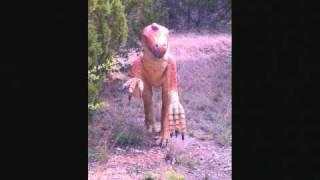 Dinosaur Valley State Park.wmv