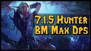 7.1.5 Hunter Beast Mastery MAX DPS!