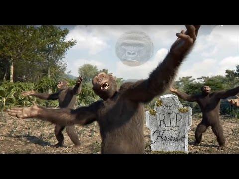 Harambe's Funeral Dance Tribute