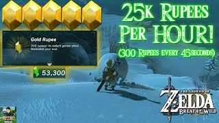 Zelda: Breath of the Wild - 25,000 Rupees PER HOUR (300 Rupees Every 45 Seconds)!