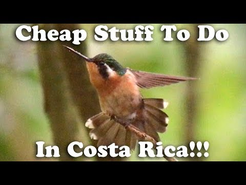 Dirt Cheap - Monteverde, Costa Rica (San Jose and Cloud Forest)