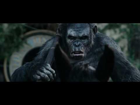 Sia - Free The Animal [Music Video]
